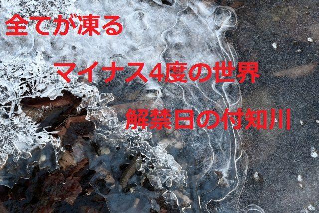 解禁日の付知川