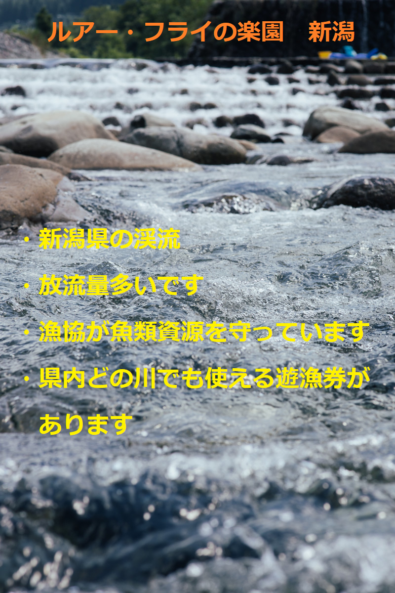 新潟の渓流画像