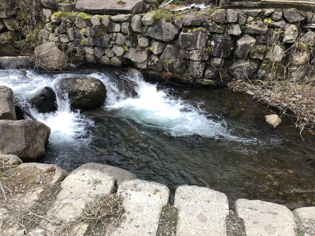 柿崎川の深場